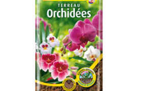 Terreau Orchidées 6L ALGOFLASH