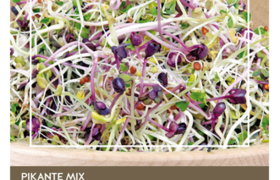 Organic Sprouting Mélange Piquante - Buzzy